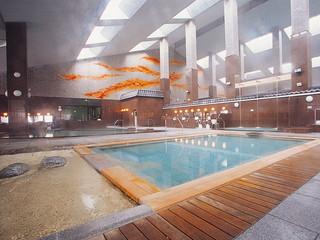 きたゆざわ 森のソラニワ 総御影造りの大浴場