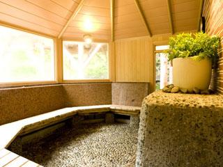 ゆづくしSalon一の坊 「よもぎ蒸し風呂」手狩りの蓬を温泉蒸気で蒸しているため、吸引浴が楽しめる