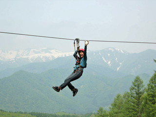 水上高原ホテル200 水上高原フォレストジップラインで爽快!空中散歩を楽しもう!グリーンシーズンのみ
