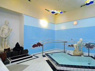 富士屋ホテル 貸切風呂マーメイドバスは45分2100円~(予約制)