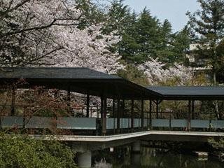 まつさき 四季折々の庭園の情緒が心を和ませる金沢近郊の近代的日本旅館。