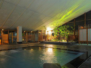 グランディア芳泉 男性大浴場。選べるという幸福、湯巡り三昧