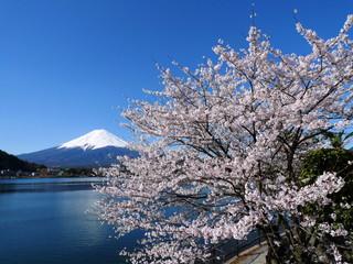 うぶや 富士山と河口湖を望む湖畔のリゾート