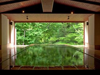 扉温泉 明神館 山の景色を切り取ったような眺め、胸下まで浸かる立ち湯
