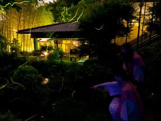 欽山 毎年6月には館内庭園に自然の蛍が織り成す幽玄の光が