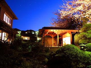 あたみ石亭別邸 桜岡茶寮 その名のとおり染井吉野と八重桜を間近に望みます