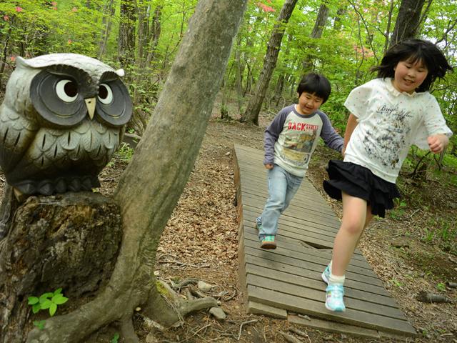 森林浴、虫とり、「ふくろうの森」でリラックス