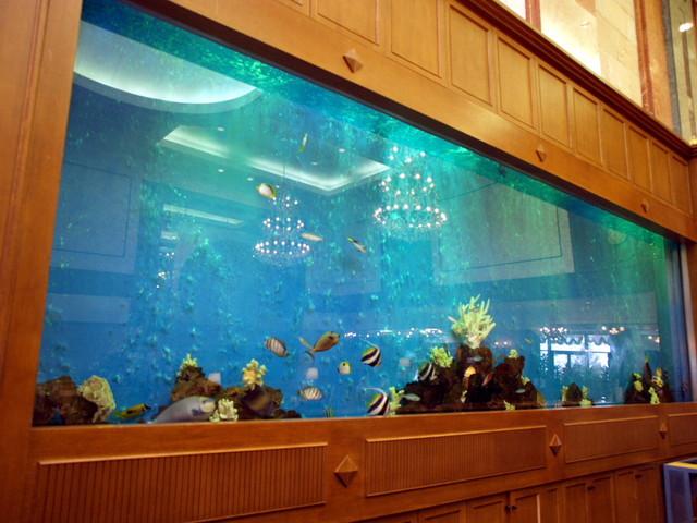 定山渓万世閣ホテルミリオーネ フロントでは目の前の大きな水槽で泳ぐ熱帯魚に会える