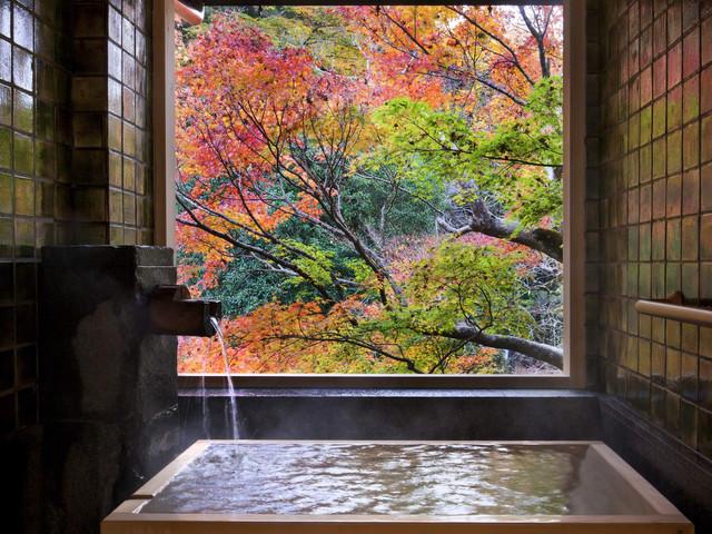 四季折々の日本情緒と風情を感じることができる