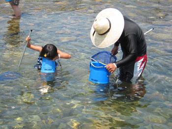 体験プログラム「川遊び」