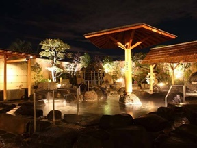 天然温泉 かきつばた(愛知県)