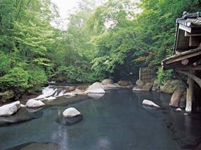 山みず木(熊本県)