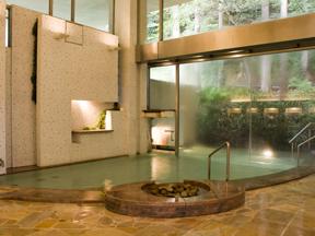 小田急 山のホテル とろりとやわらかな感触の天然温泉