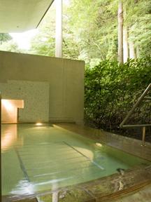 小田急 山のホテル 森林浴と温泉浴の一挙両得をねらう