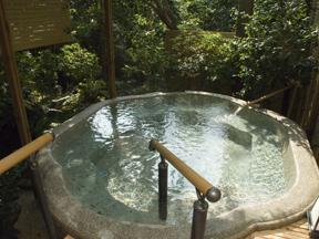 海石榴つばき 竹づつから湯が流れ出す野趣あふれる風呂