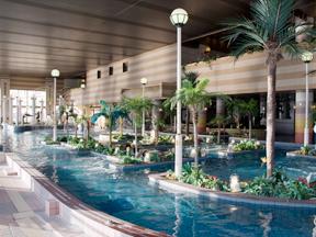 勝浦ホテル三日月 水着であそべる温泉ドーム、アクアパレス
