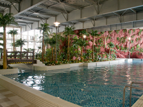 鴨川ホテル三日月 年間通して泳げる室内プール