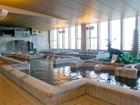 龍宮城スパ・ホテル三日月 富士の湯