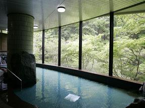 秋保グランドホテル 本館「梵天の湯」大浴場