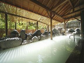 名湯の宿パークホテル雅亭 硫黄泉を掛け流しにする男子露天風呂