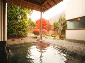 源泉湯の宿 紫翠亭 男性庭園露天風呂「浦島の湯」