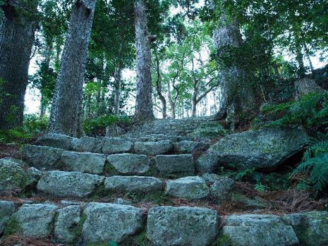 紀伊山地の霊場と参詣道の画像 p1_15