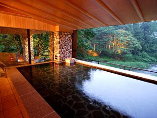 結びの宿 愛隣館 目の前に広がる豊沢川と森を楽しみながら温泉を満喫