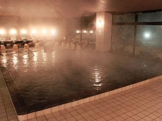 りんどう湖ロイヤルホテル 含硫黄-Ca・Mg-硫酸塩温泉「那須温泉」露天温泉岩風呂