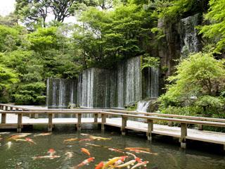 ホテル雅叙園東京(旧:目黒雅叙園) 自然を感じたい時は園内にある庭園へ。滝の裏側を巡りながらお散歩もできます