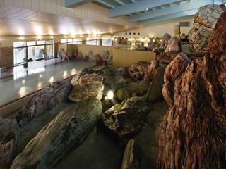 金太郎温泉 全国から集めた石を使い、立山連峰をイメージした屋内岩風呂