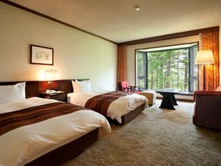 蓼科東急ホテル ホテル自慢のプライベートガーデンを望む南向きのツインルーム