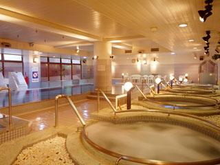 ウェルネスの森 伊東 ジャグジーや寝湯など8種の浴槽をお楽しみください