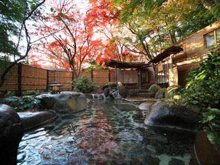 新井旅館 野天風呂 木漏れ日の湯
