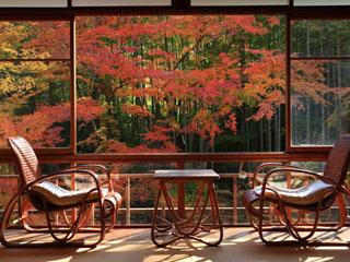 新井旅館 客室