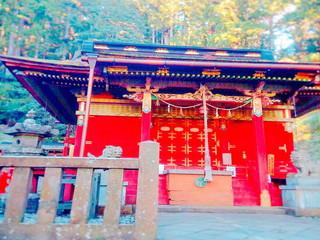 湯の風HAZU 周辺観光「鳳来山東照宮」 投稿者:Onezuさん