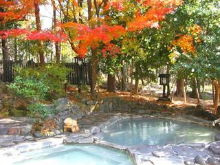 旅行人山荘 森林浴も楽しめる林の中の貸切露天風呂。赤松の湯、もみじの湯、ひのきの湯