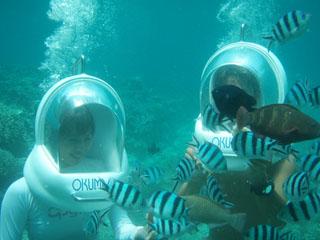 オクマプライベートビーチ&リゾート(旧:JALプライベートリゾートオクマ) 多彩なマリンアクティビティをお楽しみください