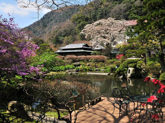 吉池旅館 1万坪の旧岩崎家庭園をぜひご散策ください