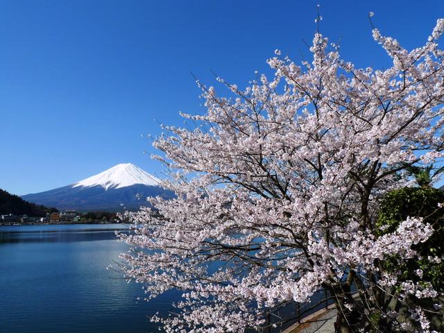 湖山亭うぶや 富士山と河口湖を望む湖畔のリゾート
