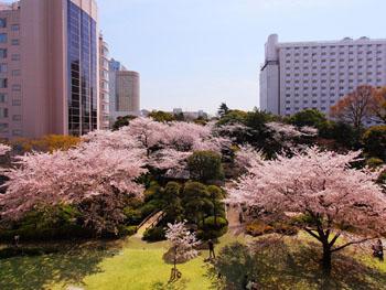 東京の都心とは思えない「日本庭園」
