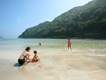 近くのビーチは海水浴や生物観察に最適