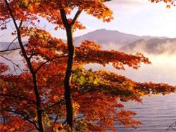 紅葉の旅特集2019 - 全国の紅葉ガイド&人気の宿 北海道・東北エリア