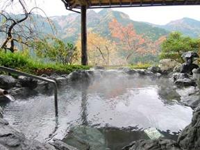 新祖谷温泉 ホテルかずら橋(徳島県)