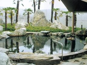 天然の湯あいあい温泉(徳島県)