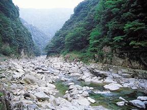 大歩危 祖谷温泉郷