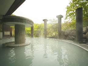 第一滝本館 「男性大浴場」万病の湯