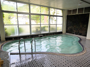 湯元庄屋和泉屋旅館 自然光が降り注ぐ広々とした大浴場